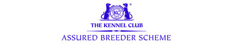 Kennel Club Accredited Breeder Scheme