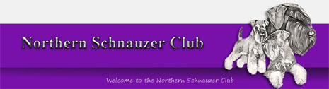 Northern Schnauzer club